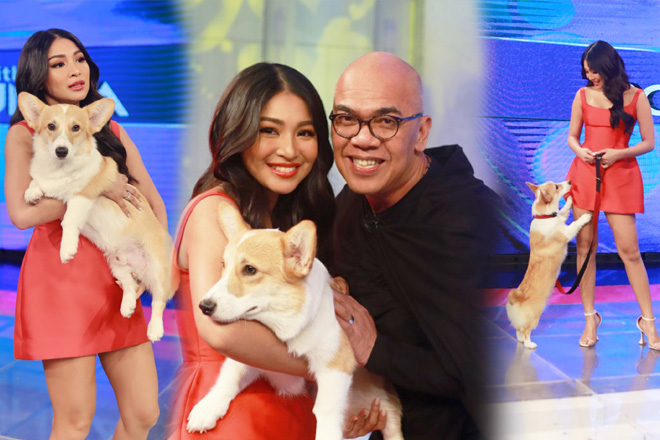 """IN PHOTOS: Nadine and James' """"baby"""" visits the set of Tonight With Boy Abunda"""
